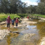 Mortlock River